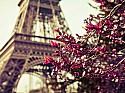 Париж + Рим