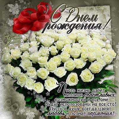 Белые розы поздравление с днем рожденья