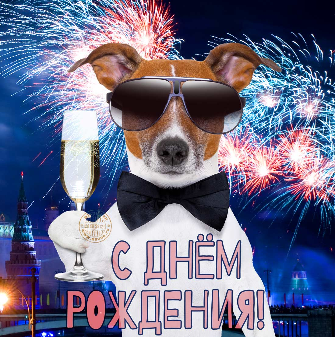 Новогодние прикольные поздравления 2017-2018