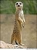 Навигация GPS в автобусном туре - последнее сообщение от suricat